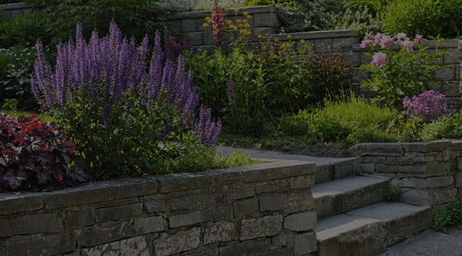 Minneapolis Hardscapes
